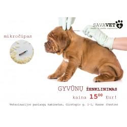 Mikročipavimas (gyvūnų ženklinimas)