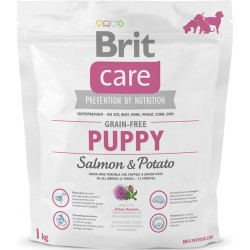 Brit Care Grain-free Puppy Salmon & Potato, 1kg (sveriamas)